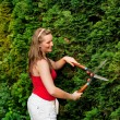 Woman gardener trimming the — Stock Photo