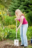 Woman gardener digging the — Stock Photo