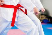 En un gimnasio de artes marciales — Foto de Stock