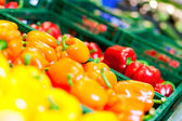Vegetables (bell pepper, — Foto Stock