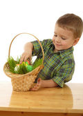 Little boy with easter eggs in grass — Stock Photo