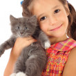 Little girl with gray kitty — Stock Photo