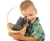 Little boy with gray kitty in wicker — Stock Photo