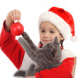 Little girl in Christmas hat with gray kitty and decoration — Stock Photo #4924024