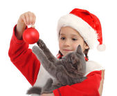 Little girl in Christmas hat with gray kitty and decoration — Stock Photo