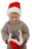 Little boy in Christmas hat with gray kitty — Stock Photo