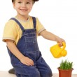 Smiling little boy watering potted grass — Stock Photo