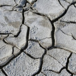 Salinized eroded soil - dry cracked earth - Stock Photo