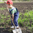 Little boy on field with big shovel — Stock Photo #4978591