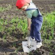 Little boy to dig with big shovel — Stock Photo #4978598