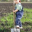 Little boy to dig on field with big shovel - Stock Photo