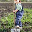 Little boy to dig on field with big shovel — Stock Photo
