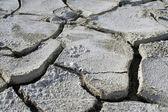 Salinized eroded soil - close-up — Stock Photo