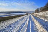 Zonnige winter voorsteden weg — Stockfoto