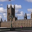 Stock Photo: Westminster Palace (fragment)
