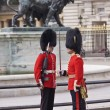 Queens guards - Stock Photo