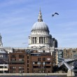 St Paul`s Cathedral and Millennium Bridge — Stock Photo #4905908