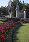 Flowers near Buckingham Palace — Stock Photo
