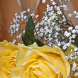 Yellow rose and glass of wine — Stock Photo