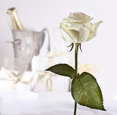 White rose and champagne — Stock Photo