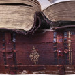 Old books — Stockfoto #5016400