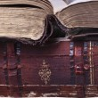 Foto Stock: Old books