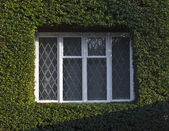 Window in english house — Foto Stock