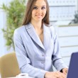 Stock Photo: The beautiful business woman at office