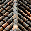 Tiles on the roof — Stock Photo #5111965
