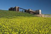 Abandoned sulfuric acid plant — Stock Photo