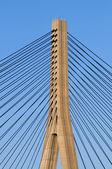 Szczegóły struktury międzynarodowego mostu — Zdjęcie stockowe