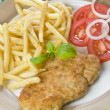 Chicken cutlet — Stock Photo
