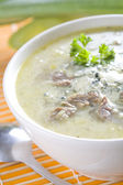 Pore soup, bullion with meat — Stock Photo