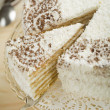 Coconut cake — Stock Photo