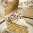 Coconut cake — Stock Photo #5233420