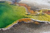 Yellowstone National Park Hot spring — Stock Photo