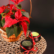 Red poinsettia — Stock Photo #4881927