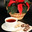 Red poinsettia and tea - Stock Photo