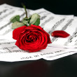 Notes and rose - Stock Photo