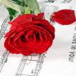 Stock Photo: Notes and rose