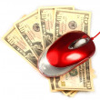 Computer mouse  and dollars. E-commerce - Stock Photo