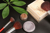 Brush in mineral make-up — Stock Photo
