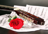 Notes, guitar and rose — Stock Photo