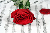 Notes and rose — Stock Photo