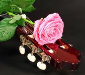 Rosa ros och gitarr — Stockfoto