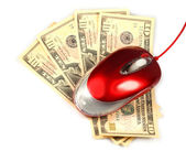 Computer mouse and dollars. E-commerce — Stock Photo