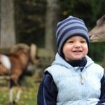 Kleiner Junge und Damwild — Stock Photo