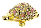 Golden tortoise — Stock Photo