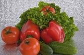 Pepper lettuce tomato cucumber — Stock Photo
