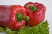 Pepper salad — Stock Photo